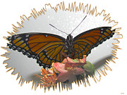 Fluttering Digital Art - Butterfly Design Collection by Debra     Vatalaro