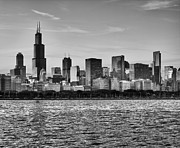 Chicago Black White Posters - Chicago Skyline Poster by Donald Schwartz