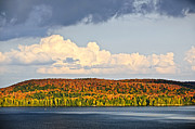 Colorful Trees Metal Prints - Fall forest and lake Metal Print by Elena Elisseeva