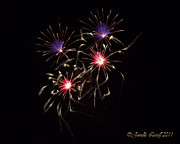 Pyrotechnics Originals - 4 Fire Flowers Fireworks by Janelle Losoff
