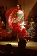 Spanish Dancer Photos - Flamenco Dancer by Carl Purcell