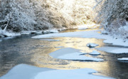 White River Scene Framed Prints - Fresh Snowfall Gauley River Framed Print by Thomas R Fletcher