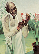 Black History Art - George W. Carver, African-american by Science Source