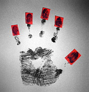 Handprint Prints - Identity Fraud Print by Kevin Curtis