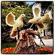 Birds Art - Instagram Photo by Luisa Azzolini