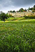 Weeds Prints - Kalemegdan fortress in Belgrade Print by Elena Elisseeva