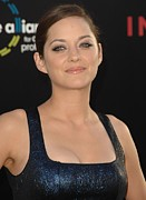 Natural Makeup Photo Posters - Marion Cotillard At Arrivals Poster by Everett