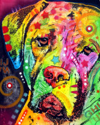 Acrylic Art Prints - Mastiff Print by Dean Russo