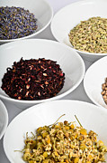 Anise Photos - Medicinal Herbs by Photo Researchers