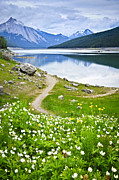 Path Photo Posters - Mountain lake in Jasper National Park Poster by Elena Elisseeva