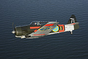 North American Aviation Prints - North American Aviation T-6 Texan Print by Daniel Karlsson