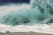 North Shore Prints - North Shore Wave Print by Vince Cavataio - Printscapes