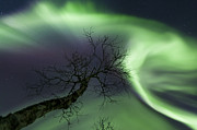 Below Framed Prints - Northern Lights In The Arctic Framed Print by Arild Heitmann
