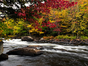 Beautiful Creek Posters - Ontario Autumn Scenery Poster by Oleksiy Maksymenko