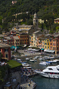 Colorful Village Prints - Portofino in the Italian Riviera in Liguria Italy Print by David Smith