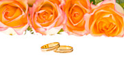 Bride Posters - 4 Red Yellow Roses And Wedding Rings Over White Poster by Ulrich Schade