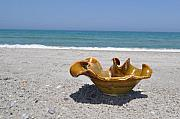 Beach Ceramics - Small wave bowl by Gibbs Baum