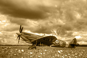 D5000 Prints - Spitfire Mk IXB Print by Chris Day