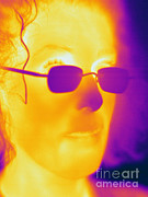 Human Being Posters - Thermogram Of A Woman Poster by Ted Kinsman