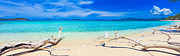 Sunny Art - Tropical beach Malcapuya by MotHaiBaPhoto Prints