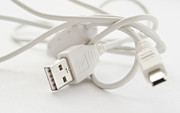 Laptop Posters - USB cable Poster by Blink Images