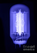 Electronic Photos - Vacuum Tube by Ted Kinsman