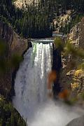 Falls Art - Yellowstone Grand Canyon by Patrick  Flynn