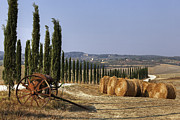 Hazy Photo Prints - Tuscany Print by Joana Kruse