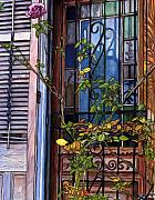 New Orleans Drawings - 48  French Quarter Door with Rose by John Boles