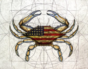 Blue Framed Prints - 4th of July Crab Framed Print by Charles Harden
