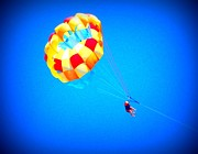 Parasail Posters - . Poster by Erika Betts