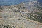 Alpine Zone Photos - Appalachian Trail - White Mountains New Hampshire USA by Erin Paul Donovan