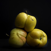 Agriculture Art - Apples by Bernard Jaubert