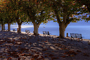 Benches Photo Framed Prints - Ascona - Lake Maggiore Framed Print by Joana Kruse