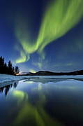 Mirrored Framed Prints - Aurora Borealis Over Sandvannet Lake Framed Print by Arild Heitmann