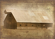 Farming Barns Prints - 5 Birds on a Barn Print by Cindy Wright