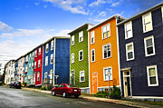 Residential Posters - Colorful houses in St. Johns Newfoundland Poster by Elena Elisseeva