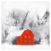 Gina Signore Framed Prints - Country winter Framed Print by Gina Signore