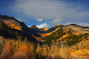 Wyoming Originals - Fall by Mark Smith