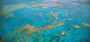 Whitsunday Photos - Great Barrier Reef, Australia by Peter Walton Photography
