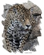 Colored Charcoal Digital Art Framed Prints - Jaguar Framed Print by Larry Linton