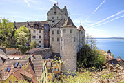 Vineyard Photos - Lake Constance Meersburg by Joana Kruse