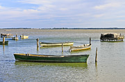 Travel Prints - Lesina - Apulia Print by Joana Kruse