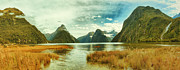 Milford Sound Print by MotHaiBaPhoto Prints