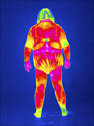 Human Condition Framed Prints - Obese Woman, Thermogram Framed Print by Tony Mcconnell
