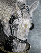 Horse Pastels Paintings - 5 Oclock Somewhere by Judi Roberts