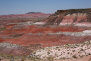 Sixty-six Acrylic Prints - Painted Desert by Frank Romeo
