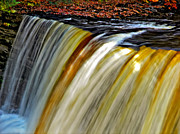 Fall Leaves Photos - The Flow by Steve Harrington