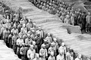 Qin Prints - The Terracotta Army Print by Sami Sarkis