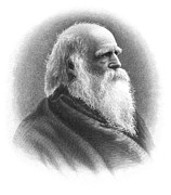 Bryant Posters - William Cullen Bryant Poster by Granger